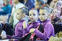 Кубок общества «Авангард» по художественной гимнастики, Фото: 61
