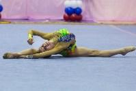 Соревнования по художественной гимнастике 31 марта-1 апреля 2016 года, Фото: 34