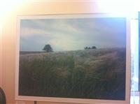 Фотовыставка о Куликовом поле в здании УМВД, Фото: 11