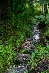 В деревне Бородино нет воды, Фото: 11