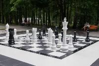 """""""Большие шахматы"""" в Центральном парке, Фото: 7"""