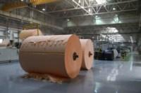 Открытие второй линии производства завода SCA, Фото: 27