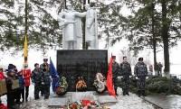 Митинг в День памяти неизвестного солдата, 3.12.2015 , Фото: 7