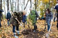В Центральном парке Тулы появился сосновый бор «Слободы», Фото: 21