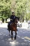 Конный патруль в Туле, Фото: 14