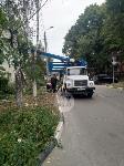 Читатель о вырубке деревьев на ул. Революции: «Была красивая зеленая улица, а теперь…», Фото: 8