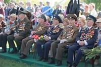 "По Туле прошла колонна ""Бессмертного полка"", Фото: 206"
