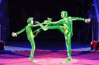 День защиты детей в тульском цирке: , Фото: 70
