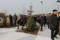 Возле мемориала «Защитникам неба Отечества» высадили еловую аллею , Фото: 18