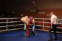 В Туле прошла матчевая встреча звезд кикбоксинга, Фото: 81