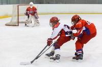 I-й Кубок главы администрации Новомосковска по хоккею., Фото: 106