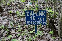 Кладбище домашних животных в Туле, Фото: 34