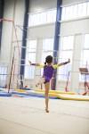 Спортивная гимнастика в Туле 3.12, Фото: 124