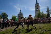 В Тульской области прошел фестиваль крапивы, Фото: 211