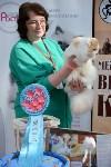 """Выставка """"Пряничные кошки"""" в ТРЦ """"Макси"""", Фото: 104"""
