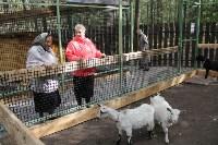 В Новомосковске открылся мини-зоопарк, Фото: 24