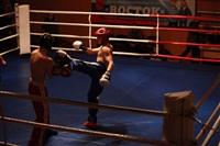 В Туле прошла матчевая встреча звезд кикбоксинга, Фото: 45