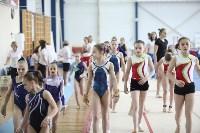 Соревнования по спортивной гимнастике на призы Заслуженных мастеров спорта , Фото: 74