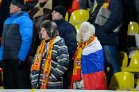 """""""Арсенал"""" (Тула) - """"Уфа"""" (Уфа) - 0:1, Фото: 54"""