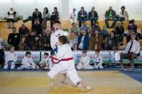 Чемпионат и первенство Тульской области по восточным боевым единоборствам, Фото: 67