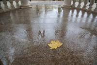Платоновский парк, Фото: 4