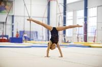 Спортивная гимнастика в Туле 3.12, Фото: 130