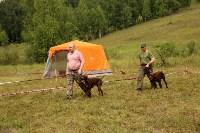 Выставка охотничьих собак под Тулой, Фото: 76