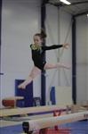 Открытый турнир по спортивной гимнастике. 23-30 ноября 2013, Фото: 11