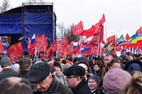 В Туле прошел митинг в поддержку Крыма, Фото: 19