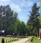 Три места для яркого загородного отдыха в Тульской области, Фото: 60