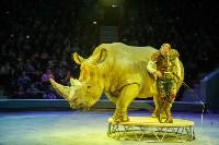 Туляков приглашают на новогоднее представление «Ёлка в цирке», Фото: 69