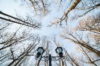 Морозное утро в Платоновском парке, Фото: 27