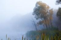 Центральный парк, утро, осень, Фото: 8