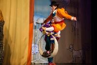 Театр кошек в ГКЗ, Фото: 45