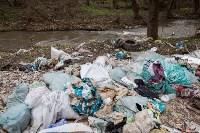 В Туле на берегу Тулицы обнаружен незаконный мусорный полигон, Фото: 38