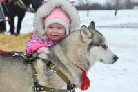 Праздник северных собак на Куликовом поле , Фото: 113