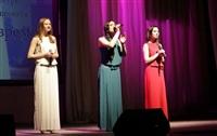 Открытие Года Культуры в Тульской области 27.01.2014, Фото: 7