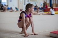Тульские гимнастки готовятся к первенству России, Фото: 20