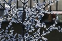 Весна в городе. 10 марта, Фото: 55