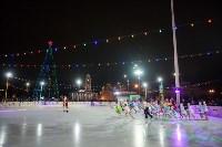 Туляки отметили Старый Новый год ледовым шоу, Фото: 37