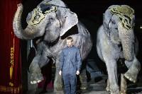 """Пресс-конференция """"Шоу слонов"""", Фото: 34"""