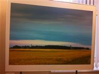 Фотовыставка о Куликовом поле в здании УМВД, Фото: 1
