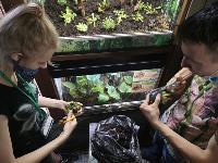 Укротитель хищных растений Сергей Куницын, Фото: 1