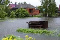 Дедилово затопило, Фото: 23