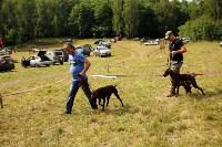 Выставка охотничьих собак под Тулой, Фото: 96