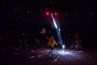 Туляков приглашают на новогоднее представление «Ёлка в цирке», Фото: 43