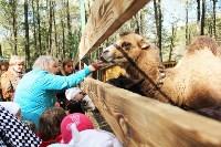 В Новомосковске открылся мини-зоопарк, Фото: 18