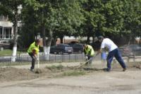 В Туле проводят работы по благоустройству зон отдыха. 26 июля 2014 год, Фото: 1