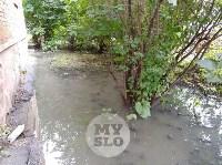Дворы на Красноармейском проспекте затопило нечистотами, Фото: 15