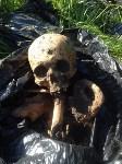Немецкое захоронение в Тепло-Огаревском районе, Фото: 10